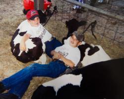 Just us cow folk