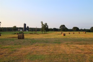 Late summer on the Farm. Hay is harvested for the winter.